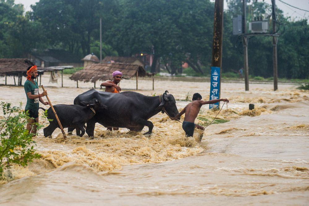 Ascienden a 66 los muertos por inundaciones y deslaves en Nepal