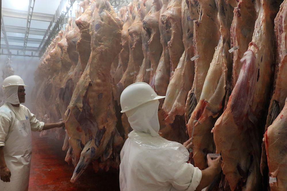 Adulteración afecta a un pequeño sector de industria cárnica de Brasil — Temer